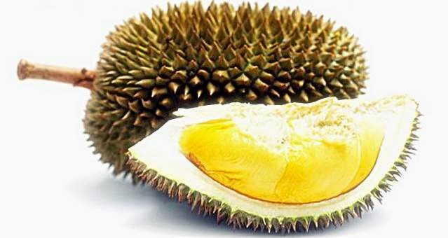 Durian Fruit For Masculinity Men Indonesia