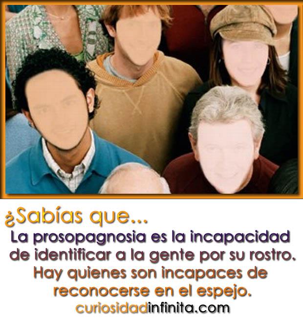 que es la prosopagnosia, trastorno, no reconocer caras