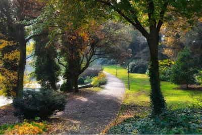 De paseo por el parque - The park
