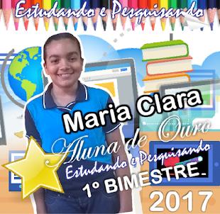 ALUNA ESTUDANDO E PESQUISANDO - 2017