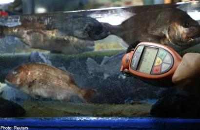 Snippits and snappits the fukushima endgame the for Pacific ocean radiation fish
