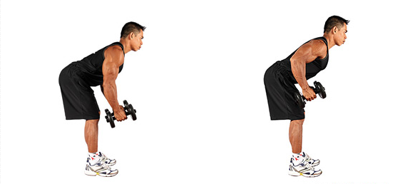 Dumbbell Bent-Over Rows