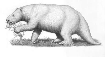 la familia Mylodontidae en Argentina Mylodon