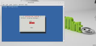 linux Mint lightdm
