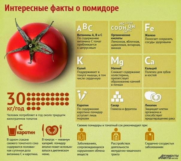 Интересные факты о помидорах