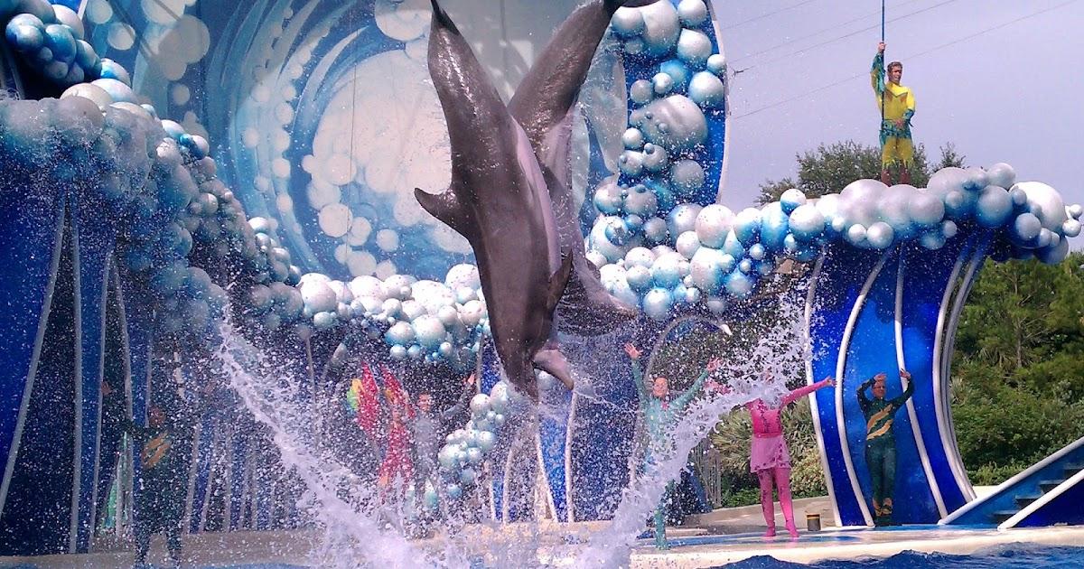 2013 admission with 2014 seaworld orlando fun card - Busch gardens florida resident pass ...