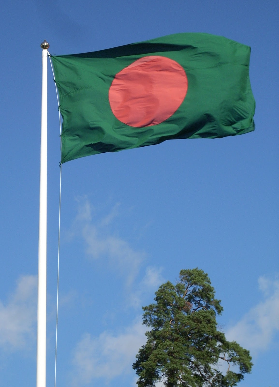 http://4.bp.blogspot.com/-VWb4UH7G9rU/T_tFPl7CFLI/AAAAAAAAAEc/jjZ6bbCgShI/s1600/Flag_of_Bangladesh_and_tree.jpg