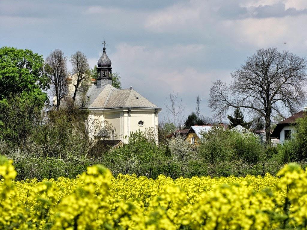 Krajobraz w okolicy Puław
