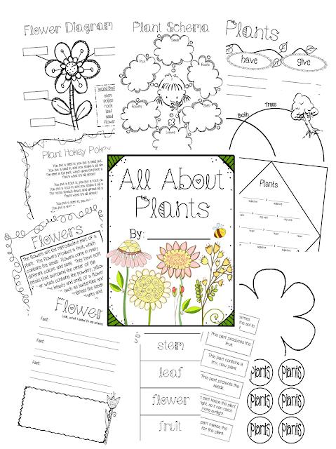 https://www.teacherspayteachers.com/Product/All-About-Plants-Unit-612820