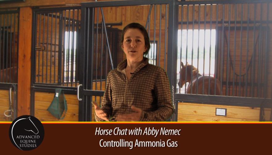 Nemec speaking inside a horse barn.