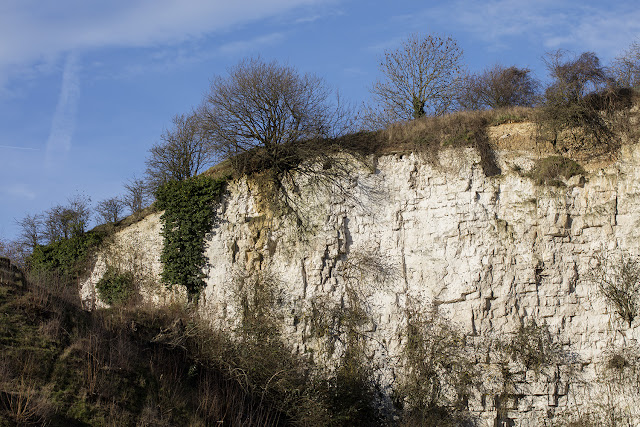 The north end of the face of Riddlesdown quarry, 28 December 2015.