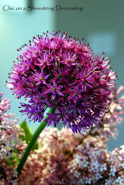 alium flower arrangement
