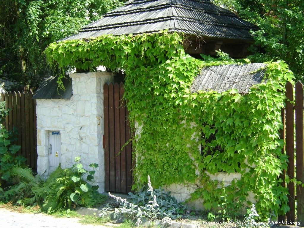 Jeśli mamy ładniejszy dom może być... fot. Dariusz Marek Gierej