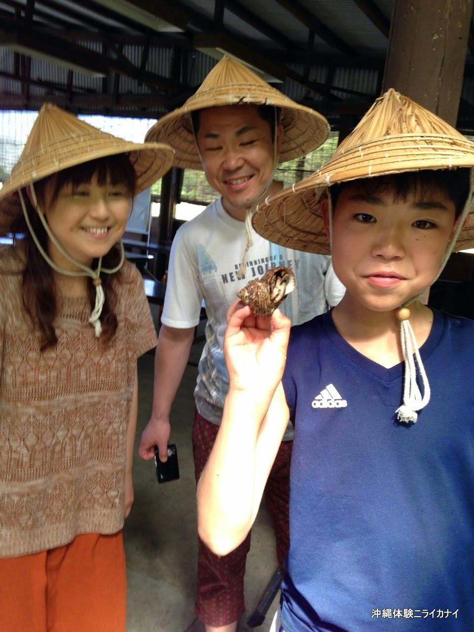 体験/観光 サトウキビ 収穫 黒糖作り