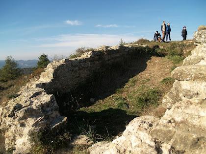 Restes d'estructures del Castell de Gurb
