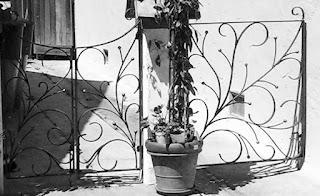 Заборы из ковки. Фото 55