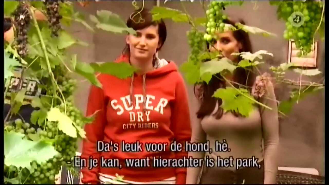Ann van Elsen: maart 2012