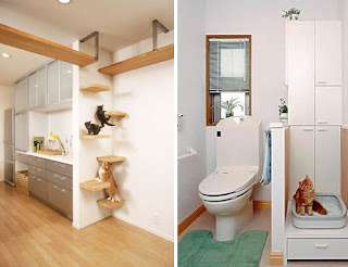 gatos cama de gato+(10) Decoração da casa e animais de estimação