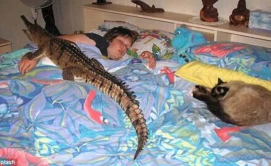 5 Δείτε:Σοκαριστικές εικόνες με παιδιά και επικίνδυνα ζώα!!!