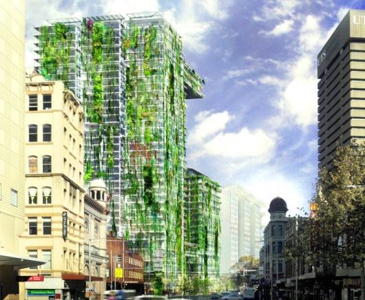 Sydney Akan Punya Taman Vertikal Paling Tinggi Sedunia