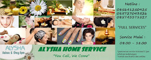 UPDATE : ALYSHA HOME SERVICES