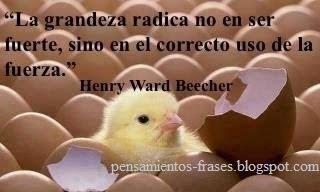 frases de Henry Ward Beecher