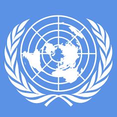 Org Registrada na ONU