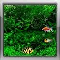 Fish Tank Live Wallpaper unnamed.jpg