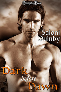 Dark Before Dawn by Saloni Quinby