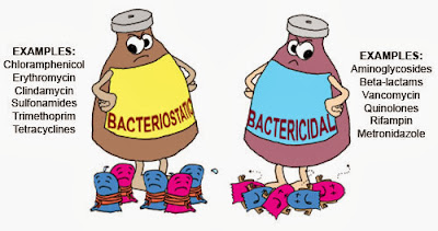 the preparation of bacteriostatic and bactericidal action