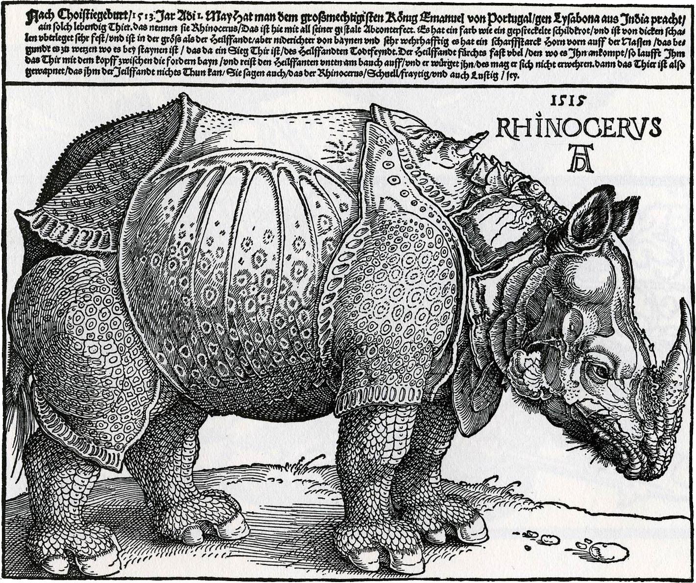 http://4.bp.blogspot.com/-VZAGNbgKV3I/T-vpx3zcMnI/AAAAAAAAAcI/rNC3542e4zo/s1600/durer-rhinoceros-engraving-1515.jpg