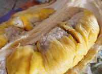 35 Jenis Durian Terbaik di Indonesia yang Cepat Berbuah