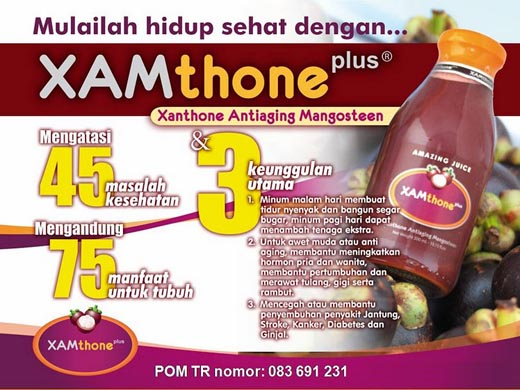 distributor xamthone murah