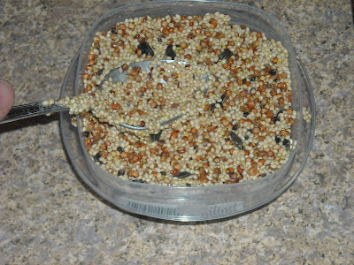 A succulent life bird seed cake tutorial for Bird seed glue recipe