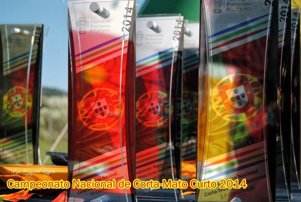Campeonato Nacional de corta-mato curto 2014 - Portalegre