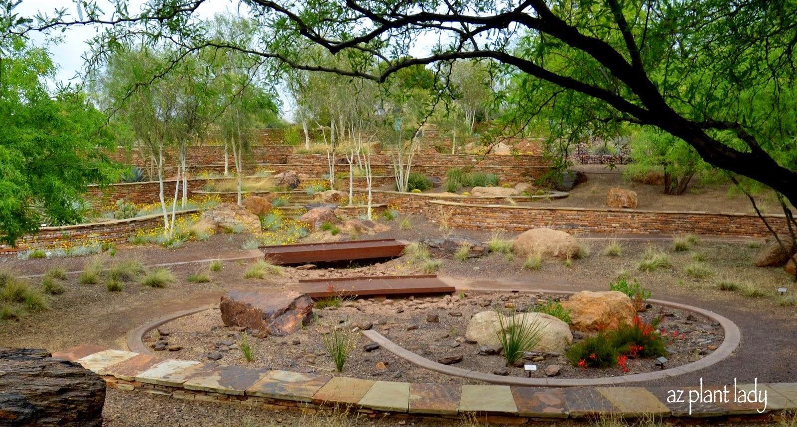 Ramblings from a desert garden a jewel in the city for Xeriscape garden design