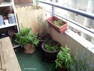 Bac de jardin fait main en épicéa