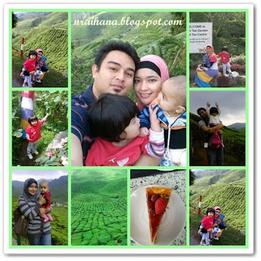 Cameron Highlands Jun 2011