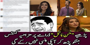 Top 30 Most liked and Funny Comments on Mann Mayal