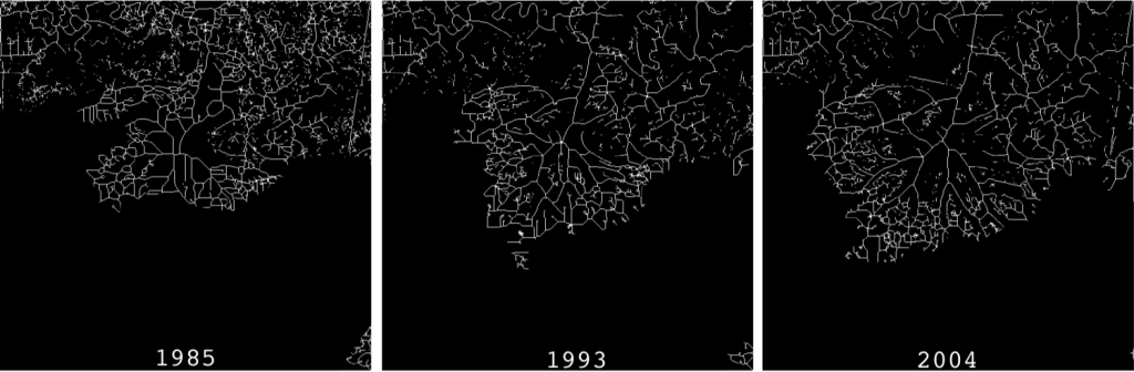 shape complexity dynamics of bangladesh delta Dynamics of land use/cover changes and the analysis of landscape fragmentation in dhaka metropolitan, bangladesh owing to the increase in patch shape complexity.