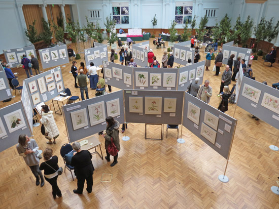 RHS Botanical Art Exhibition in the Lindley Hall