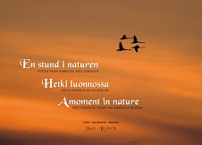 En stund i naturen / Hetki luonnossa / A moment in nature 35 €  ----------- mr.birtz@gmail.com