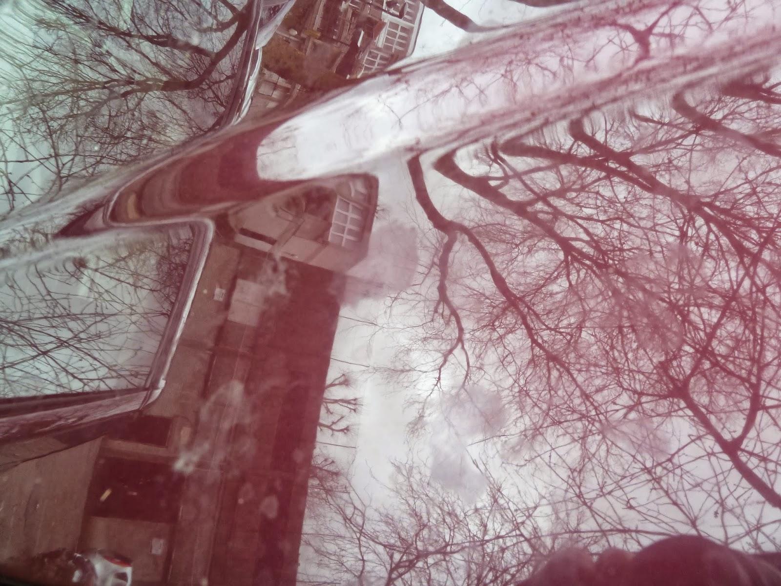 gummi pflege frameless windows