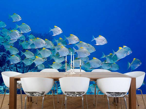 Under Sea - Fishes