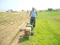 Beschrijving: http://4.bp.blogspot.com/-VbRSNL39NHg/Tj_IGRwPlOI/AAAAAAAAEjw/pyu-4hFE29M/s200/grass.jpg