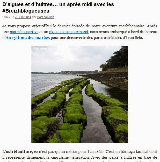 ^http://lesmotsdekiara.wordpress.com/2014/06/25/dalgues-et-dhuitres-un-apres-midi-avec-les-breizhblogueuses/