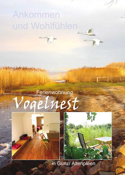 Ferienwohnung Vogelnest - Ankommen und Wohlfühlen