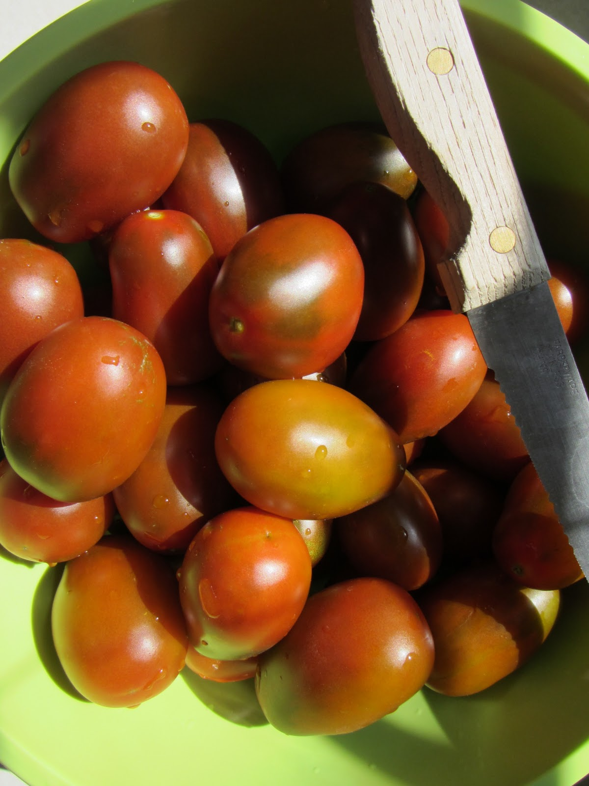 ten tips about tomato plants u2013 the rusted garden