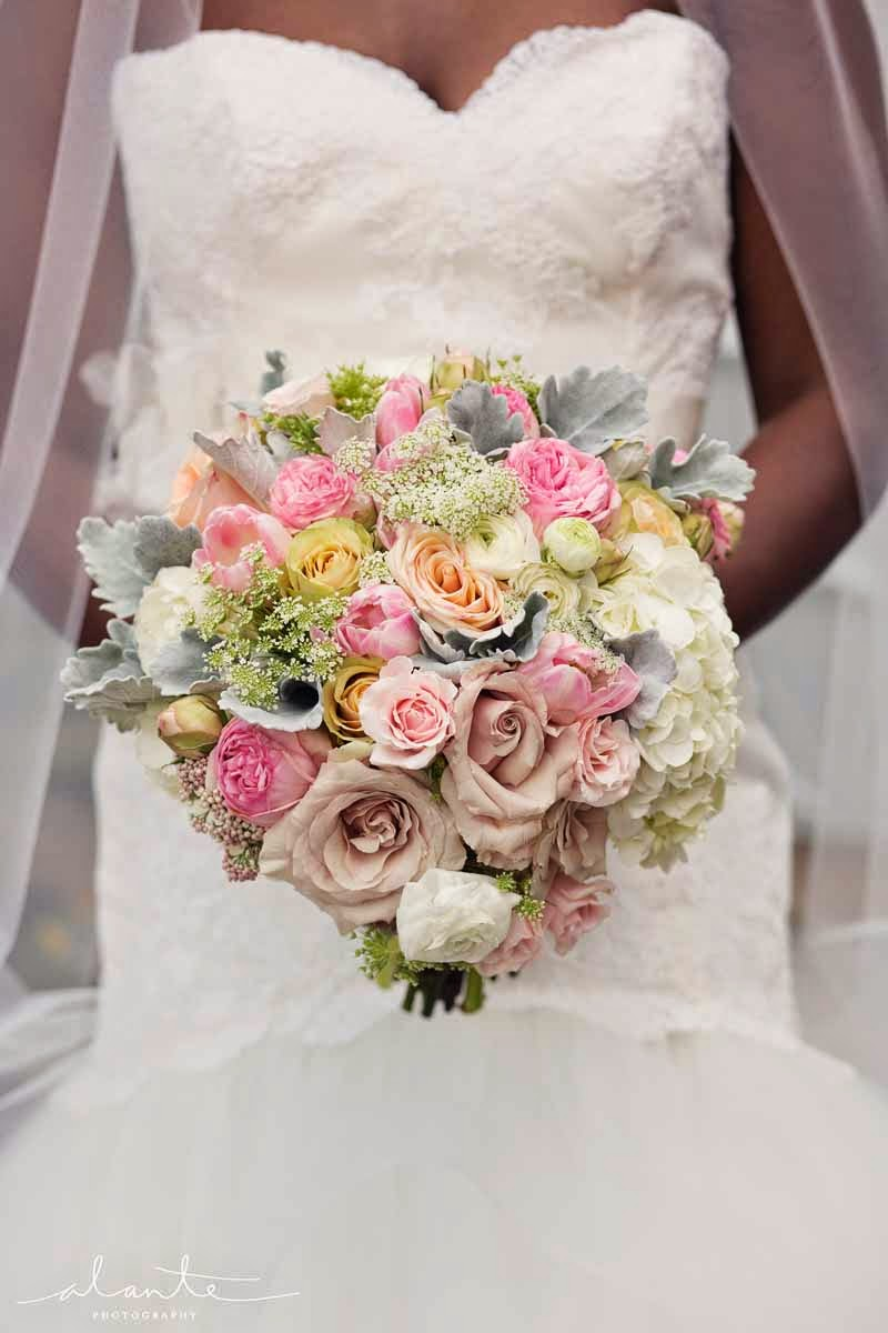 blush roses, pink garden roses, hydrangea