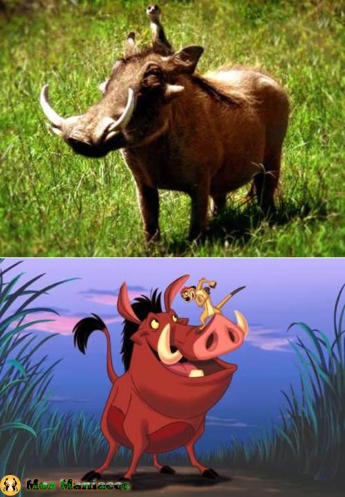 """Pumba do filme """"O Rei Leão"""""""